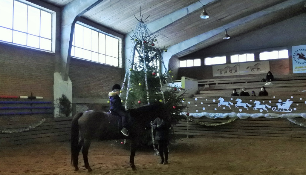 Šeimos Kalėdinė diena su žirgu 2